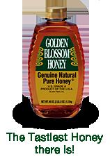 gbh-product-tagline