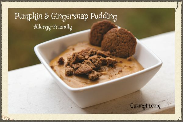 Pumpkin Spice Season: Pumpkin & Gingersnap Pudding (Allergy-Friendly)
