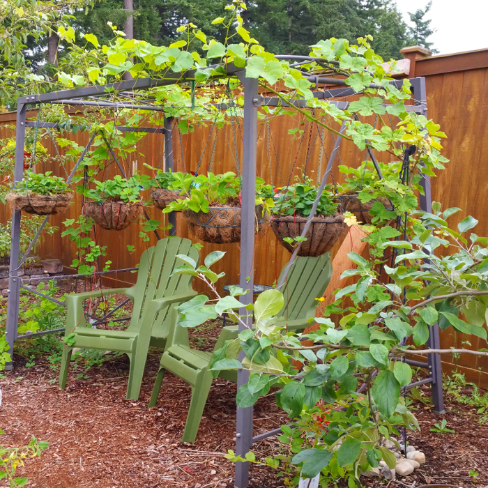 DIY Upcycling In The Garden
