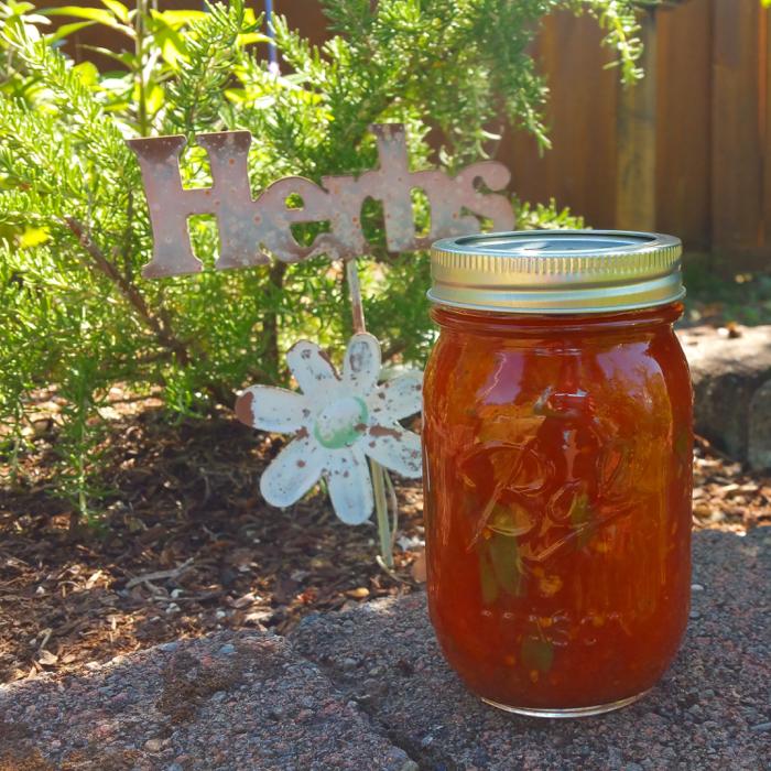 Canning 101: Basil Tomato Pasta Sauce